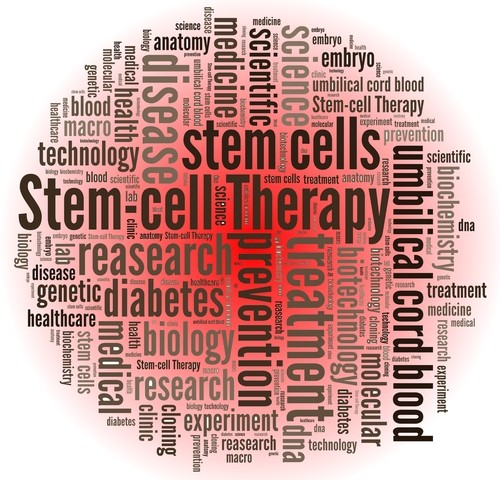 Spotlight on the Ssc Patient and Stem Cell Therapy: Katrina Brown