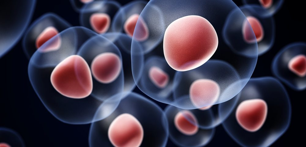 Machine Learning Helps Predict Stem Cell Transplant Outcomes, Study Suggests