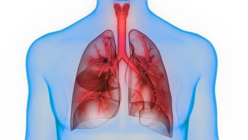 Study Identifies Predictors of Poor Outcome in Patients with SSc at Risk for Pulmonary Hypertension