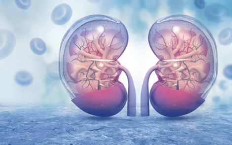 Renal Function Normal in Systemic Sclerosis Patients Despite High Arterial Stiffness, Study Suggests