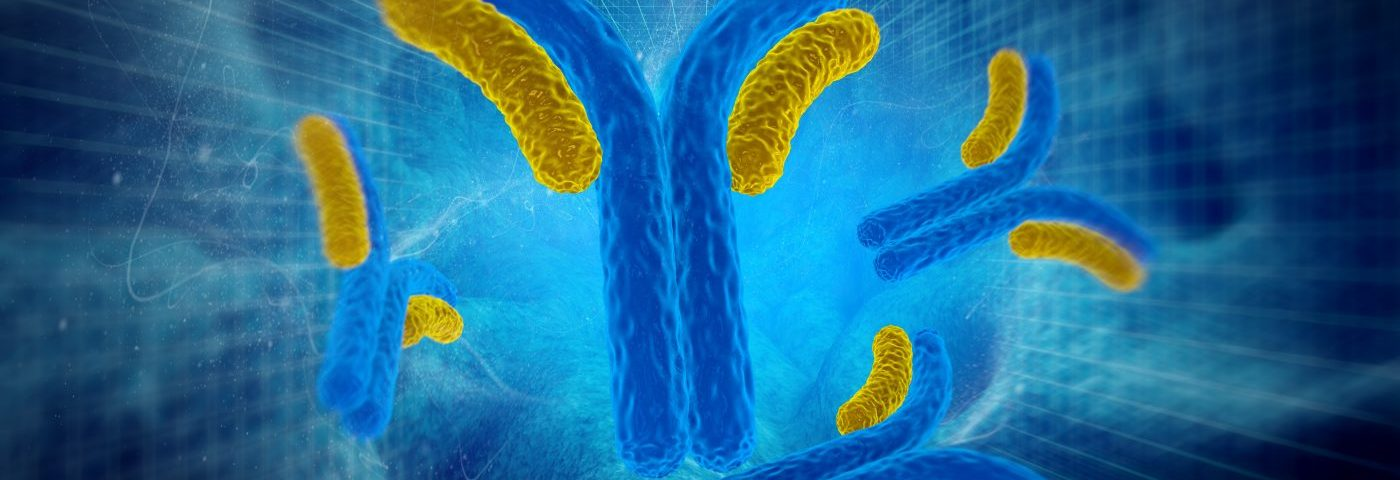 Autoantibodies in Scleroderma Patients Trigger Profibrotic and Proinflammatory Responses, Study Finds