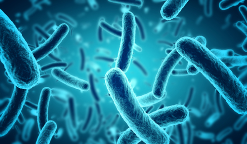 Systemic Sclerosis Patients Have Deregulated Levels of Skin Microorganisms, Study Shows