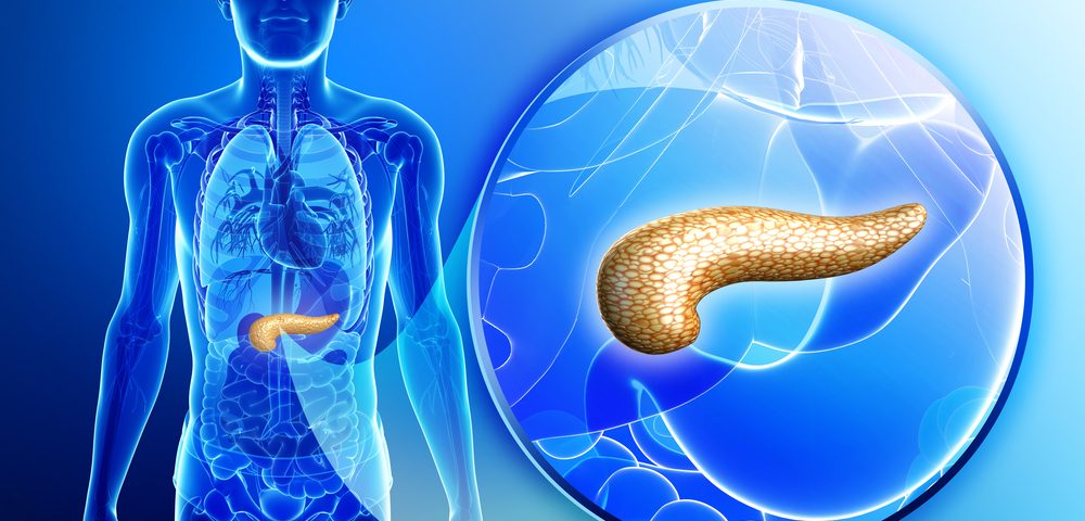 Systemic Sclerosis Not Linked to Problems with Exocrine Pancreas, Which Carries Malnutrition Risk, Study Finds
