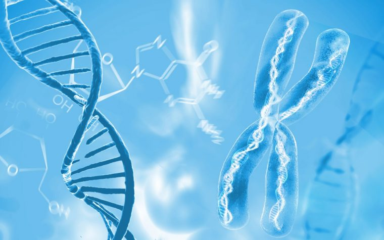 Study Differentiates Gene Activity Between Scleroderma, Lung Cancer
